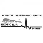 Hospital-Veterinario-Exotic